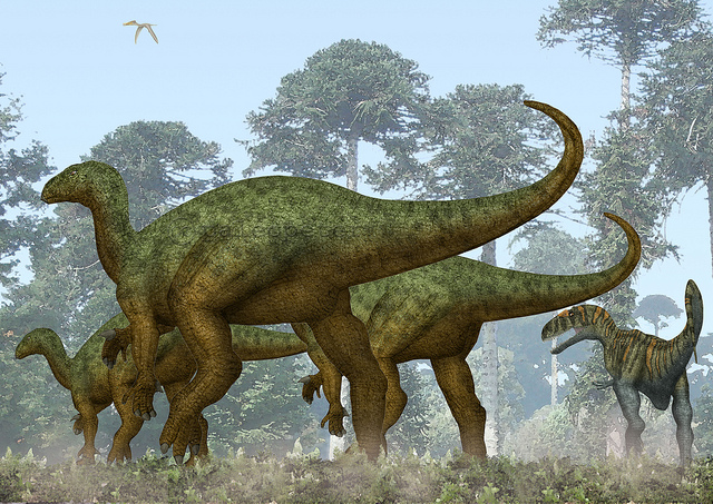 2 Iguanodons et 1 Neovenator. Image de Peter Montgomery sous licence CC 2.0 by-nc